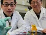 Sugar-powered Batteries for Smartphones within Three Years