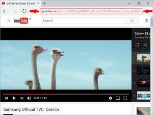 DVDVideoSoft free YouTube Downloader